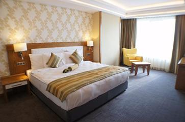 DİVALİN HOTEL (Kongre Otelimiz)